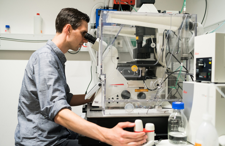 Dominik Niopek am Mikroskop