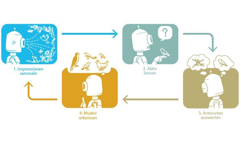 Der Kreislauf des Lernens eines Roboters