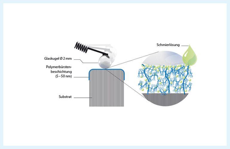 Der natürliche Knorpel im Queerschnitt im Vergleich zur künstlichen Bürstenstruktur