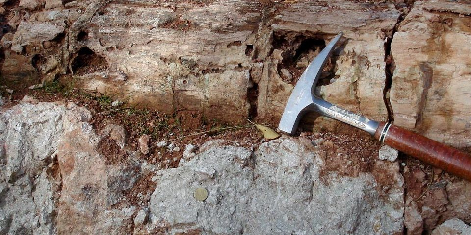 Zu Beginn des Perms brach bei Chemnitz ein Vulkan aus und begrub den Wald der Region unter Schutt und Asche. Ein Glücksfall für Geologinnen und Geologen, denn die Bäume sind deshalb bestens konserviert